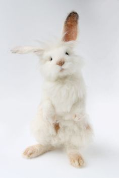 Needle Felted White Bunny Lionhead Bunny Felted by YvonnesWorkshop