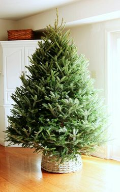 Diy basket for Christmas tree