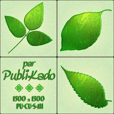 PUBLIKADO: Petites feuilles vertes