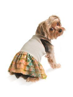 Ruffled Dog Dress by Ruffluv on Gilt Home