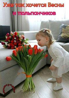 Corporate Flowers, Funny Babies, Diy Food, Beautiful Children, Positive Quotes, Beautiful Flowers, Watermelon, Bouquet, Plants