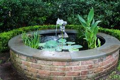 A beautiful combination of old growth and newer plantings, this Charleston garden toured by HGTV Gardens features azaleas, hydrangea, lavender, camellias and ferns.