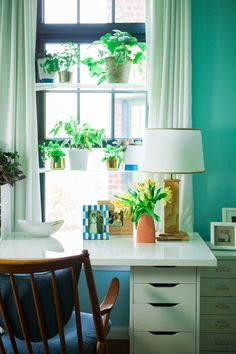 window-plant-shelves-1