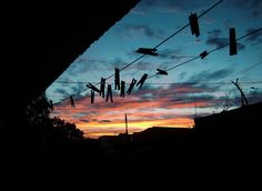 Sunset on Lines