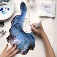 "- H e l e n a    R o c h a h (@helenarochah) on Instagram: ""Fish ~ Watercolor 💦🔵 So, many hours of hard work... 🐠😉 #art #fish #waterblog #betta #prints…"""