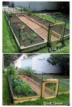 Backyard Vegetable Gardens, Vegetable Garden Design, Outdoor Gardens, Herbs Garden, Flowers Garden, Courtyard Gardens, Raised Garden Bed Plans, Raised Bed Garden Design, Raised Beds