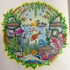 Fish enchanted forest