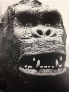 Classic Monster Movies, Classic Horror Movies, Classic Monsters, Horror Films, King Kong 1933, Jungle Love, Skull Island, Vintage Horror, Stop Motion