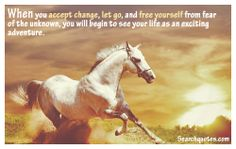 When you accept change, let go, and free yourself from fear of the unknown, you will begin to see your life as an exciting adventure.