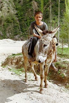 Traditional form of travel in the Pamir mountains, Tajikistan