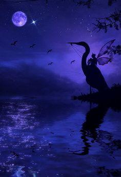 Crane rider at night.