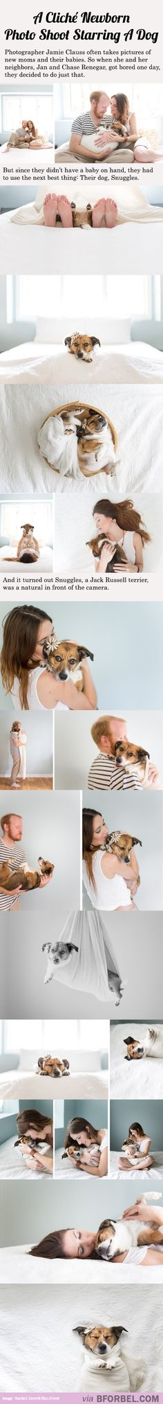20 Cliche Newborn Photos Starring A Dog...I am dying. This is so me. Jordan would absolutely hate this hahah