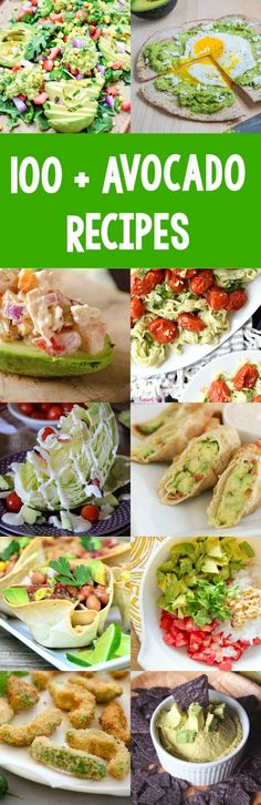100 avocado recipes! So many new recipes to try!