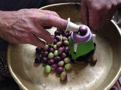 Evde çeşitli yöntemlerle yeşil zeytin yapabilirsiniz. Artık çoğu semt pazarında, hatta marketlerde bile taze zeytin satılıyor. Ağaçtan topladığınız, yahut pazardan aldığınız taze zeytinlerle gönül rahatlığıyla yiyebileceğiniz, temiz, sağlıklı zeytinler kurabilirsiniz. Üstelik kendi yaptığınız bu zeytinleri yemenin keyfi bir başka olacaktır. Yeşil zeytin kırma, çizme veya bütün olarak kullanılabilir. Kırma zeytin ilk yapılan zeytindir. Olgunlaşmaya başlayan yeşil, kararmamış zeytinlerden…