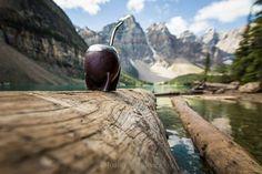 #Mate #Wild #Canadá  Morraine Lake AB #Argentina_everywhere #NatGeo #Cover_Shoot #Travel http://ift.tt/1Mu8ciD
