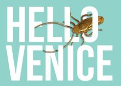 """Goldenroach"" sneaks into the Main Pavillion of the Venice Biennale 2017Undercover artist's kissmiklos witty critique on consuming art For an ongoing guerrilla art project called ""Goldenroach"" Hungarian designer and visual artist kissmiklos has been sm…"