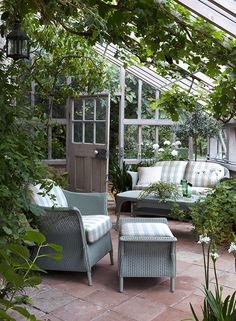 Outdoor furniture in a greenhouse. Looks so inviting and a great place to relax.