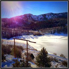 Timber Moose cabin--company retreat