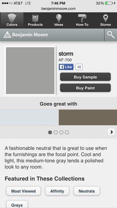 Storm by Benjamin Moore