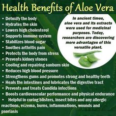 Here are some Health Benefits of Aloe Vera!