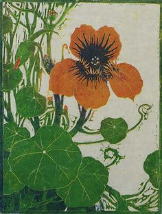 Nasturtium:  Henri Verstijnen - woodcut printed in colors, ca. 1930.