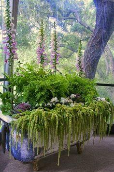 Perennial bathtub. Love the cascading plants http://gardensclick.blogspot.kr/2014/07/container-gardening.html