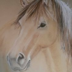 Pastel Portrait of your horse  Some of the items for the annual eBay fundraiser auction for Stolen Horse International are up!!! Start your Christmas shopping now!!! http://www.netposse.com/ebay_preview.asp