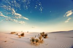 Located in the high desert of southern New Mexico, the park's acres of white gypsum sand dunes stretch into the distance as far as the eye can see. Southern New Mexico, White Sands National Monument, Landscape Photos, Wilderness, Waterfall, National Parks, Places To Visit, Adventure, World
