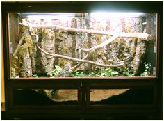 how to build a savannah monitor enclosure