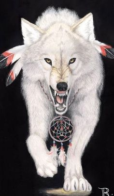 "White Wolf: By living courageously and faithfully, we experience the wonder of being alive, where everything is possible ...""The Wolves Followed A Path Of Harmony, And They Did Not Like Anything To Upset Their Way."" ""Wolf Was Chosen By The Great One To Teach The Human People How To Live In Harmony In Their Families. Wolf Was To Teach A Truth, As Each Animal... Would Do Also For The Humans To Survive."