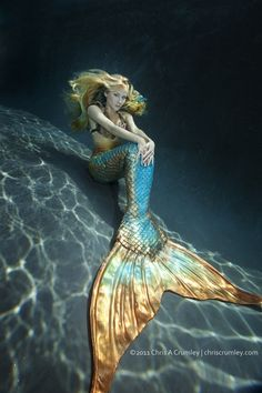 For the love of mermaids!