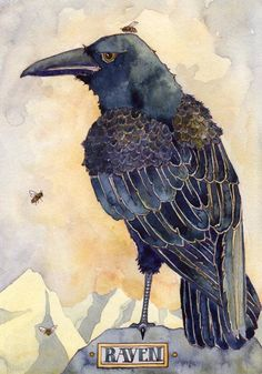 print on St Cuthberts Mill heavy velvet paper. This is an image from The Green Wheel Oracle, by Danielle Barlow Crow Pictures, Crow Images, Crow Art, Raven Art, Watercolor Bird, Watercolor Paintings, Watercolours, Illustrations, Illustration Art