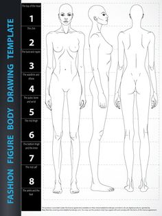Image of Fashion Figure Body Drawing Template - 8 heads, includes fashion figure from the front, side and back.