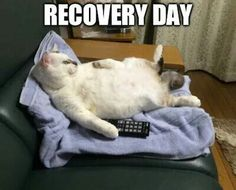 Recovery Day