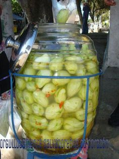 Pickled green mangos in a salty and spicy brine.  OMG I miss eating them when they are green and crunchy