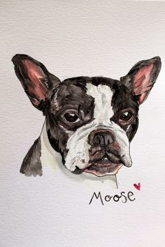 punk projects: Adventures in Watercolor Portraits - Bulldog