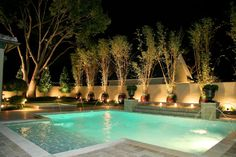 Professional Landscape Lighting Design in Lake Mary, FL Landscape Lighting Design, Lake Mary, Tropical, Light Architecture, Curb Appeal, Service Design, Orlando, Florida, Exterior