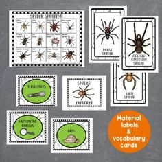 This dramatic play spider spotting set is perfect for your fall dramatic play or Halloween dramatic play area. Preschool, prek, and kindergarten students will love learning all about spiders with this spider inspired dramatic play center. Let them buy tour tickets, search for spiders, and record their findings. The Spider Spotting dramatic play center is a great addition to a fall theme or Halloween theme or study on spiders. Halloween Theme Preschool, Preschool Crafts, Halloween Themes, Dramatic Play Area, Dramatic Play Centers, Spring Theme, Autumn Theme, Vocabulary Cards, Play Centre