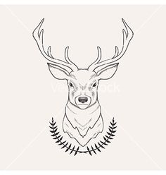 Hand drawn of deer and laurel vector by EireenZ on VectorStock®
