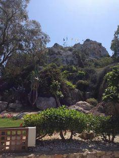 Elias gardens, Paralimni