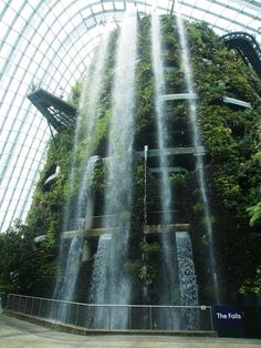 The world's largest indoor waterfall in the Cloud Forest dome at Gardens by the Bay, Singapore. The Capt & I visited July Singapore Garden, Singapore Travel, Singapore Sights, Singapore Botanic Gardens, Singapore Sling, Butterfly Pavilion, Indoor Waterfall, Forest Waterfall, Singapore Photos