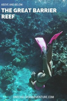 The Great Barrier Reef: Amazing views from above and below
