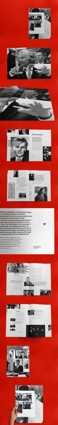 The main purpose of this project was to create two editorial projects that…