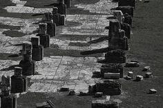 Basílica Iulia Empezada por Xulio César foi completada por Augusto e restaurada dúas veces despois de sufrir sendos incendios (9 e 283 d.C). Ocupa o lugar dunha basílica anterior, a Basilica Sempronia, construída no 170 a.C. por Tiberio Sempronio Graco. De grandes dimensións, podía albergar varios procesos xudiciais ó mesmo tempo. Se a causa era importante a xente ateigaba a nave central. Nas escaleiras que dan á via nova podemos observar taboleiros de xogos (para combater as longas esperas) gravados na pedra.