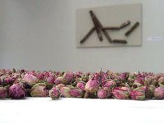 Herman de Vries - Stedelijk Museum duizenden rozenknopjes Rosa Damascena.
