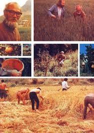http://mili-terre.com/article/13/901/masanobu-fukuoka-et-lagriculuture-du-non-agir.htm