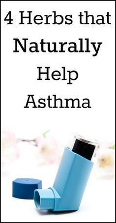 4 Herbs that Naturally Help Asthma - Natural Holistic Life