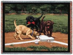 Pure Country 820T Stealing Pet Blanket Various Blended Colorways 53 by 70Inch *** Be sure to check out this awesome product.Note:It is affiliate link to Amazon.