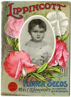 """Carrie Lippincott's 1911 catalog cover frames a toddler's photograph with sweetpeas.  Carrie Lippincott, the self-proclaimed """"pioneer seedswoman"""" and """"first woman in the flower seed industry"""" established her mail-order flower seed business in Minneapolis in 1891."""