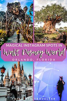 Get the best travel tips and advice from seasoned travellers Walt Disney World Orlando, Disney World Florida, Disney World Vacation, Florida Travel, Travel Usa, Disney Parks, Disney Travel, Downtown Disney, Cruise Vacation